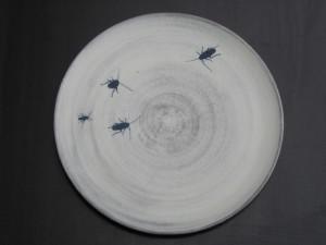 KäfertellerWeb2